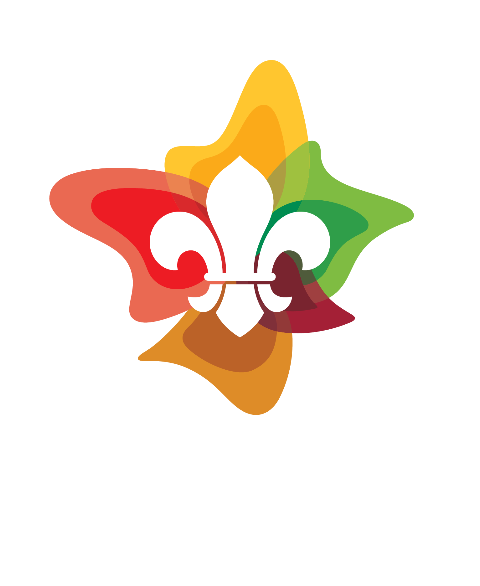Ormeau Scout Group
